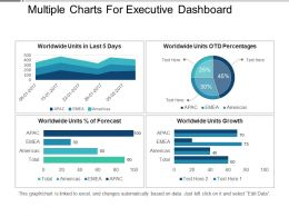 Multiple Charts For Executive Dashboard Presentation Layouts