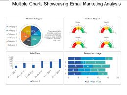 Multiple Charts Showcasing Email Marketing Analysis Presentation Slides