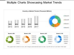 Multiple Charts Showcasing Market Trends Presentation Visuals