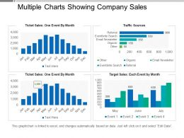 Multiple Charts Showing Company Sales Sample Ppt Files