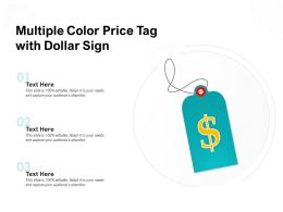 Multiple Color Price Tag With Dollar Sign