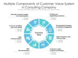 Multiple Components Of Customer Value System In Consulting Company