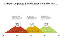 Multiple Corporate System Sales Incentive Plan Business Objectives