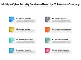 Multiple Cyber Security Services Offered By It Solutions Company