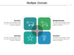 Multiple Domain Ppt Powerpoint Presentation Pictures Grid Cpb
