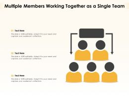 Multiple Members Working Together As A Single Team