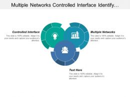 Multiple Networks Controlled Interface Identify Strategies Analyze Alternatives
