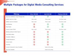 Multiple Packages For Digital Media Consulting Services Ppt Infographics