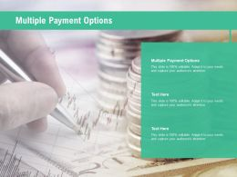 Multiple Payment Options Ppt Powerpoint Presentation Layouts Microsoft Cpb