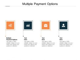 Multiple Payment Options Ppt Powerpoint Presentation Professional Skills Cpb