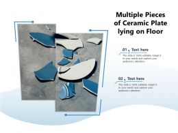 Multiple Pieces Of Ceramic Plate Lying On Floor