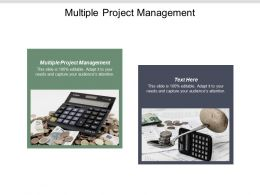 Multiple Project Management Ppt Powerpoint Presentation Show Deck Cpb