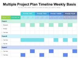 Multiple Project Plan Timeline Weekly Basis