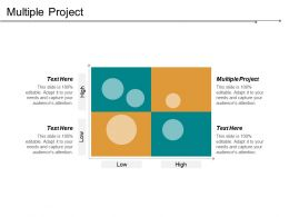Multiple Project Ppt Powerpoint Presentation File Styles Cpb