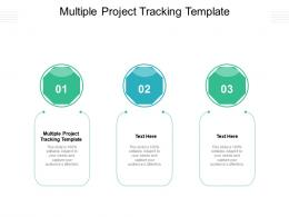 Multiple Project Tracking Template Ppt Powerpoint Presentation Summary Guidelines Cpb