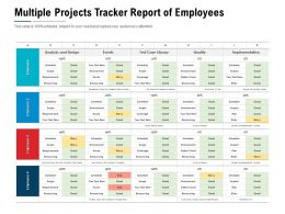 Multiple Projects Tracker Report Of Employees
