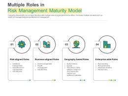 Multiple Roles In Risk Management Maturity Model