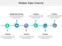 Multiple Sales Channel Ppt Powerpoint Presentation Model Ideas Cpb