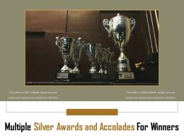 Multiple Silver Awards And Accolades For Winners