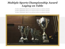 Multiple Sports Championship Award Laying On Table