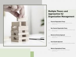Multiple Theory And Approaches For Organization Management