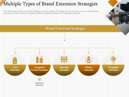Multiple Types Of Brand Extension Strategies Ppt Powerpoint Presentation Gallery