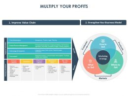 Multiply Your Profits Ppt Powerpoint Presentation Layouts Format