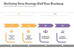 Multistep Data Strategy Half Year Roadmap