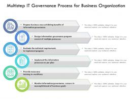 Multistep IT Governance Process For Business Organization