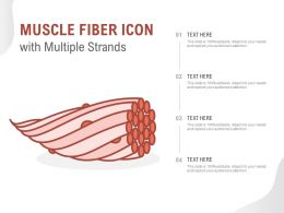 Muscle Fiber Icon With Multiple Strands