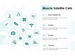 Muscle Satellite Cells Ppt Powerpoint Presentation Summary Example Topics