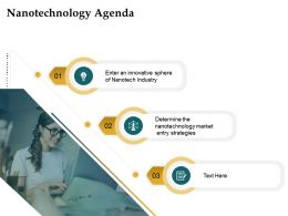 Nanotechnology Agenda Entry Strategies Ppt Powerpoint Presentation Infographics