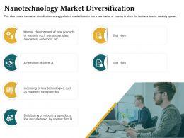 Nanotechnology Market Diversification Internal Development Ppt Microsoft
