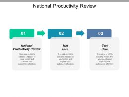 National Productivity Review Ppt Powerpoint Presentation Icon Introduction Cpb