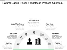 Natural Capital Fossil Feed Stocks Process Oriented Operational Model