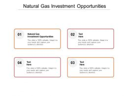 Natural Gas Investment Opportunities Ppt Powerpoint Presentation Layouts Design Inspiration Cpb
