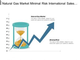 Natural Gas Market Minimal Risk International Sales Force Cpb