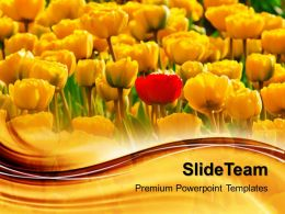 Nature Pics Powerpoint Templates Am Different Flowers Garden Image Ppt Slide Design