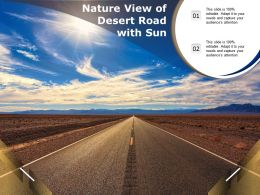 Nature View Of Desert Road With Sun