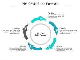 Net Credit Sales Formula Ppt Powerpoint Presentation Summary Shapes Cpb