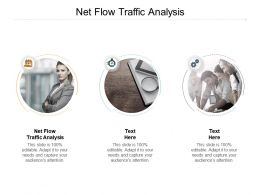 Net Flow Traffic Analysis Ppt Powerpoint Presentation Pictures Outfit Cpb