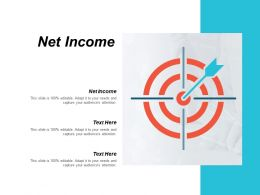 Net Income Ppt Powerpoint Presentation Styles Influencers Cpb