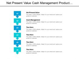 Net Present Value Cash Management Product Management Project Management Cpb
