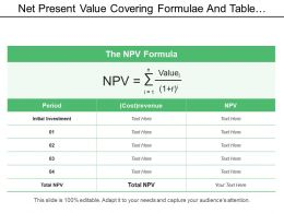 Net Present Value Covering Formulae And Table Period And Revenue