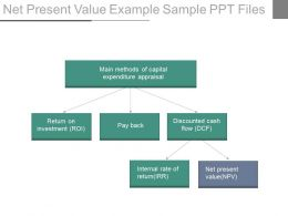 Net Present Value Example Sample Ppt Files