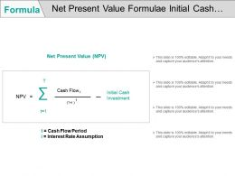 Net Present Value Formulae Initial Cash Investment