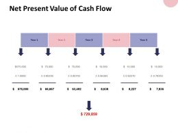 Net Present Value Of Cash Flow And Dollar Ppt Powerpoint Presentation File Format