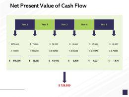 Net Present Value Of Cash Flow Marketing Management Ppt Powerpoint Presentation Slides Portrait