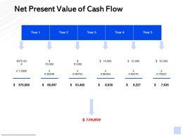 Net Present Value Of Cash Flow Strategy Management Ppt Powerpoint Presentation Show Structure