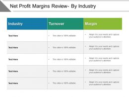 Net Profit Margins Review By Industry Ppt Ideas